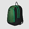 Wildcraft Roh Laptop Backpack - Green